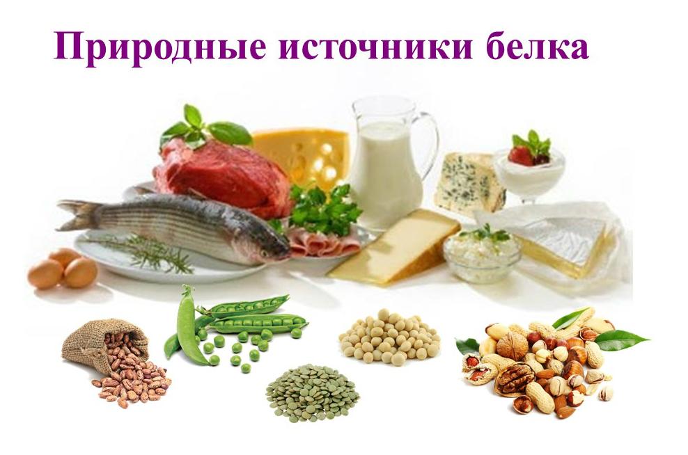 Протеиновая диета для ребенка