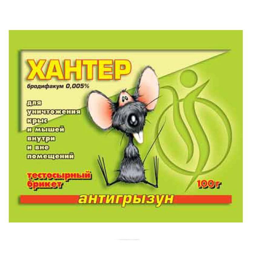 Отравление крысиным ядом человека: симптомы и последствия