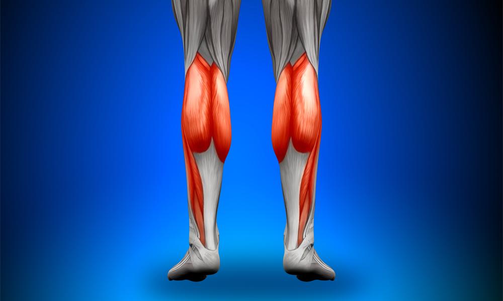 Растяжение икроножной мышцы берегите ноги во время движения