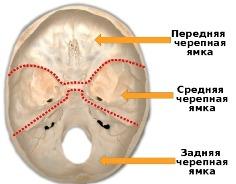 Доврачебная помощь при переломе основания черепа